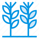 cold, gardening, green, nature, plant, spring, summer icon