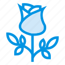 ecology, floral, flower, garden, leaf, plant, rose icon