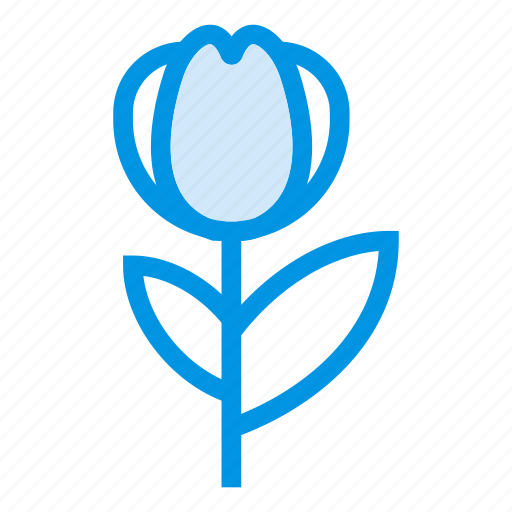 beauty, ecology, floral, flower, garden, plant, rose icon
