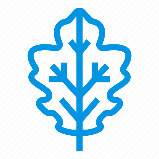 agriculture, ecology, foliage, leaf, maple, natural, plant icon