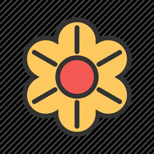 beauty, blossom, decoration, flower, garden, plant, spring icon