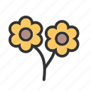 beautiful, flower, flowers, garden, rose, roses, spring icon
