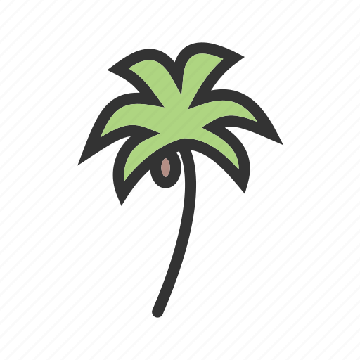beach, coconut, palm, summer, tree, trees, tropical icon