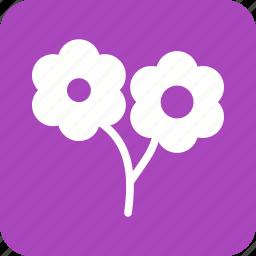 flower, flowers, garden, nature, rose, roses, spring icon