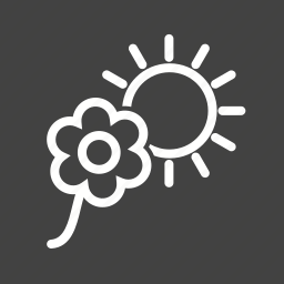 decoration, flower, flowers, garden, nature, plant, sunlight icon