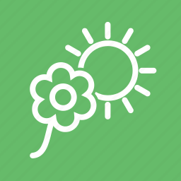 decoration, flower, flowers, garden, nature, plant, sunlight icon