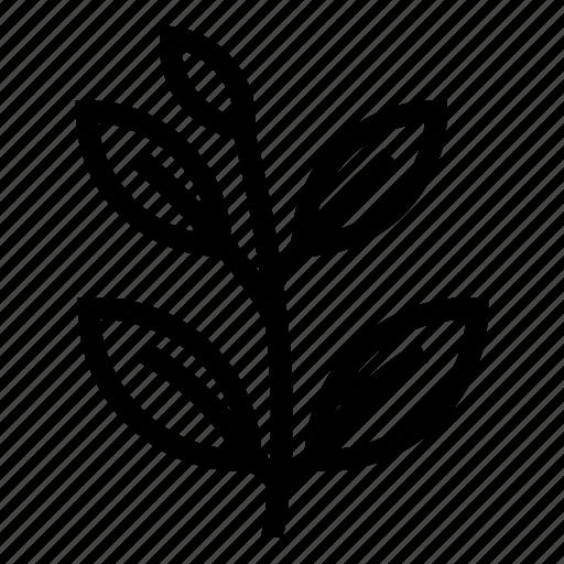 ecology, gardening, nature, original, plant, summer, tree icon