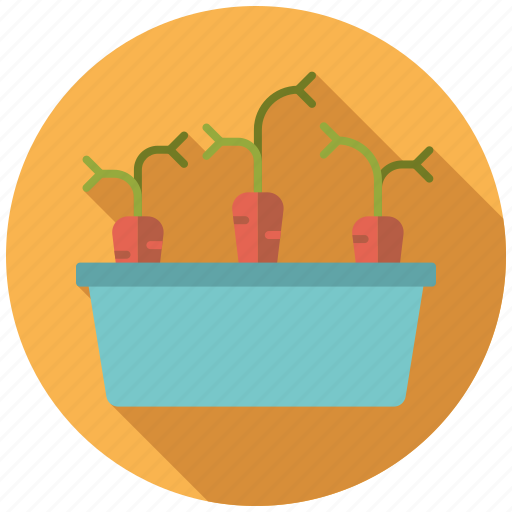 carrots, container, equipment, garden, gardening, planter, vegetables icon