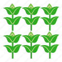 forest, gardening, growing, nature, plant, seed, tree icon