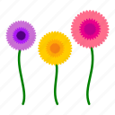 daisy, flowers, garden, gardening, leaves, nature, sunflower icon