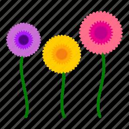 daisy, flowers, garden, gardening, leaves, nature, sunflower icon