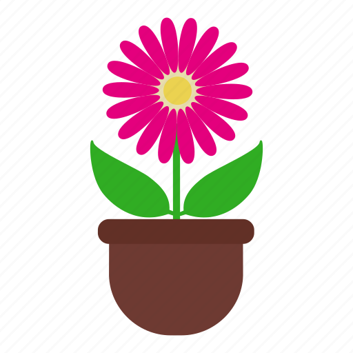 blossom, daisy, flower, garden, leaves, nature, pot icon