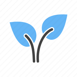leaves, roots, stem, tree icon