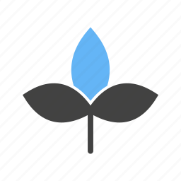 autumn, leaf, leaves, stem, with icon