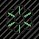 beauty, blossom, decoration, flower, garden, nature, plant icon