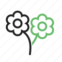 beautiful, flower, flowers, garden, rose, roses, spring