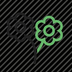 beautiful, flower, flowers, garden, rose, roses, spring icon
