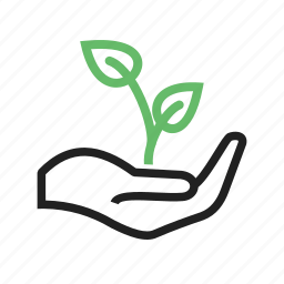 agriculture, field, green, nature, plant, plantation icon
