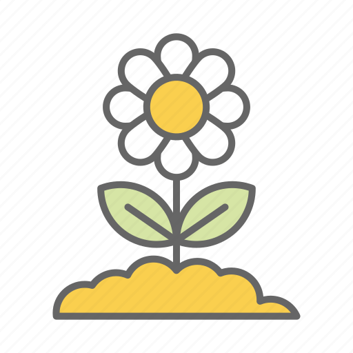 chamomile, cute, earth, flower, garden, ground, leave icon