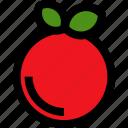 orange, gastronomy, meal, segment, fruit, food, restaurant