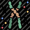 biological, chromosome, chromosomes, dna, genetics, sciences, scientific icon