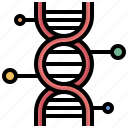 biology, dna, education, engineering, genetic, medical, science icon