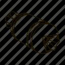 bow, box, gift, holiday, packing, present, ribbon icon