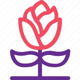 celebration, flower, marriage, party, plant, rose, wedding icon