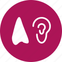 ear, hear, listen, liver icon