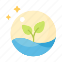 ecology, environment, glass, growth, plant, tree, water