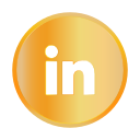 chat, commity, linkedin, online, professional, social icon