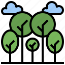 botanical, forest, garden, landscape, nature, pines, tree icon
