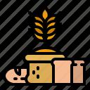wheat, harvest, farming, organic, farm