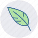 bio, design, green, leaf, nature, organic icon