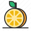 fresh, fruit, orange, slice icon