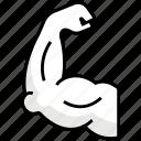 gym20, muscle, exercise, health, champion, yoga, gym