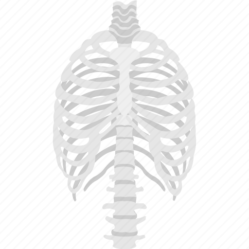 halloween celebration, halloween skeleton, horrible decoration, human rib cage, skeleton ribs icon