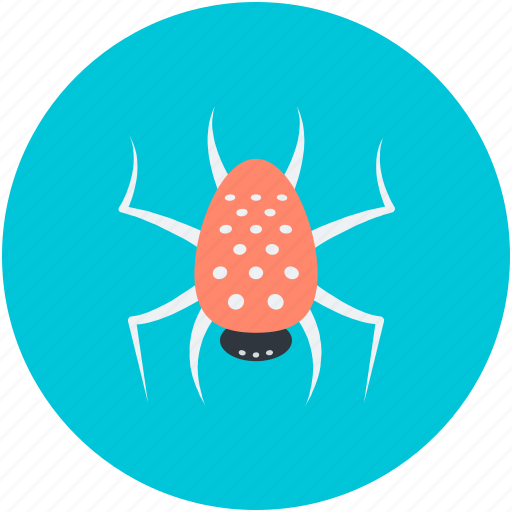 dreadful, fearful, halloween spider, scary, spider, web spider icon