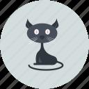 black cat, black evil cat, cat, evil cat, scary