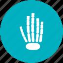 halloween, hand bones, hand x-ray, skeleton, xray icon