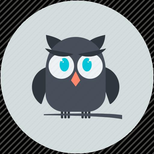 dreadful, fearful, halloween owl, horrible, owl, scary icon