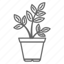 ecology, flower, flowers, nature, plant, pot icon