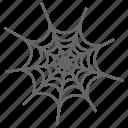 web, spider web, horror, halloween, spider, evil