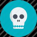 cranium, halloween cranium, halloween head, halloween skull, skull