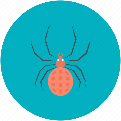 Dreadful, fearful, halloween spider, scary, spider, web spider icon - Download on Iconfinder