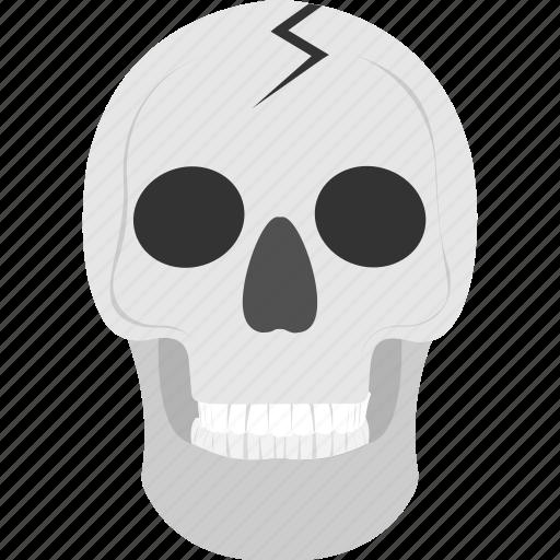 frightening object, halloween accessory, halloween cranium, human skull, skull icon