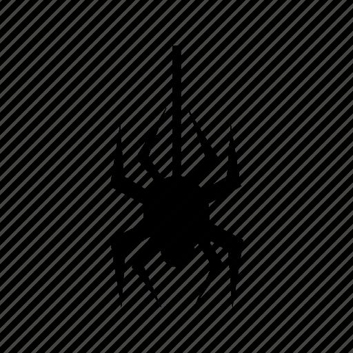 halloween, spider icon icon