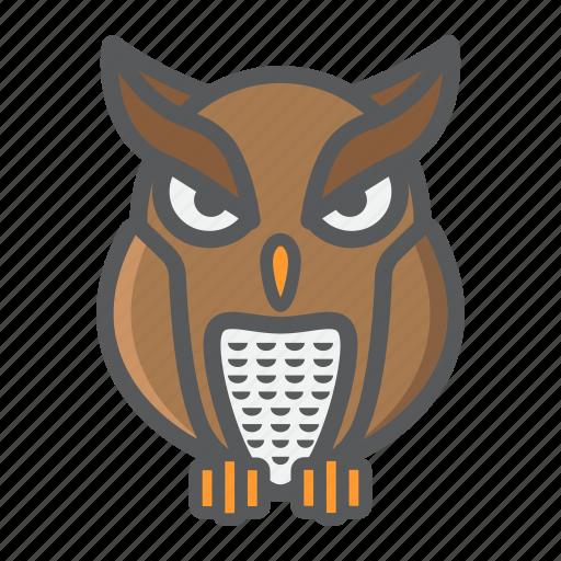 animal, bird, education, halloween, holiday, owl, wisdom icon