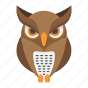 animal, bird, education, halloween, holiday, owl, wisdom icon