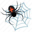 arachnid, bug, cobweb, cute, decoration, evil, fear, halloween, horror, insect, net, old, party, poison spider, spider, spider web, spooky, web icon
